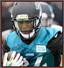 News fantasy football player T.J. Yeldon Nursing An Ankle Injury